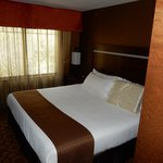 Holiday Inn Hotel & Suites Durango Central의 사진