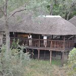 Φωτογραφία: Idube Private Game Reserve Lodge