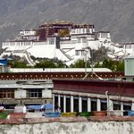 View of Potala Palace from rooftop
