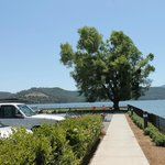 Φωτογραφία: Clear Lake Cottages & Marina