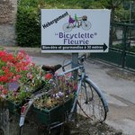 Photo of La Bicyclette Fleurie