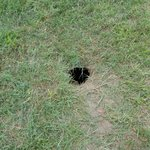 large hole in the ground near the picnic table by the river