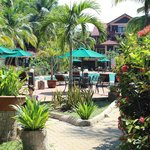 The natural surroundings at Holiday Villa Cherating