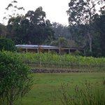 Wallaby Ridge Retreat Foto