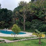 Foto de ABAD Green Forest Resort