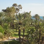Φωτογραφία: Club Med Djerba la Douce
