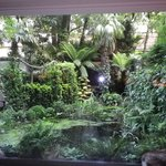 Through the large picture window onto the garden.
