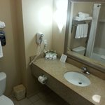 Foto van Holiday Inn Express Hotel & Suites Detroit-Utica