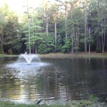 Foto van Wild Acres RV Resort and Campground
