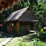 Madidi Jungle Ecolodge resmi
