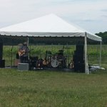 Wine and music fest 6/8/2014