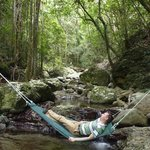 Crystal Creek Rainforest Retreat의 사진