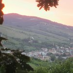 Greve From Il Santo