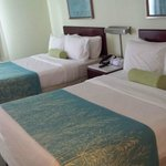 SpringHill Suites Williamsburg resmi