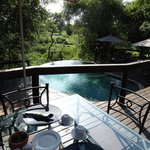 Bilde fra Elephant Plains Game Lodge