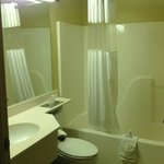Foto Microtel Inn & Suites by Wyndham Starkville