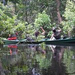 Pousada Uacari / Uakari Floating Jungle Lodge의 사진