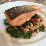 Salmon Lunch Entree