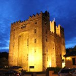 Foto de Bunratty Meadows Bed and Breakfast