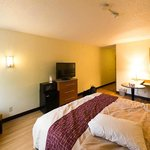 Red Roof Inn South Deerfield resmi