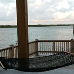 Hammock with a View!