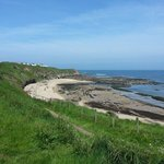 Bilde fra Haven Berwick Holiday Park