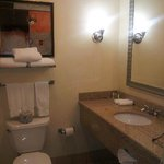 Foto de Holiday Inn Hotel and Suites Savannah-Pooler