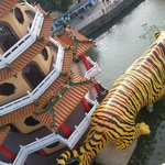 Photo de Dragon Tiger Tower