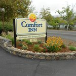 Foto di Comfort Inn Calistoga, Hot Springs of the West