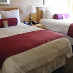 Φωτογραφία: Comfort Inn Calistoga, Hot Springs of the West