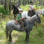 Trail ride in the Withlacoochee State Forest