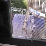 Torn screen on patio door. Feel safe?