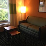 Φωτογραφία: Fairfield Inn & Suites Birmingham Pelham/I-65