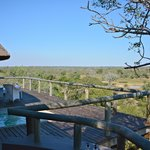 Foto de Leopard Hills Private Game Reserve