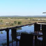 Foto di Tau Game Lodge