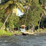 Photo de Lakesong Kumarakom