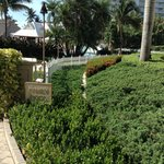 Bilde fra The Ritz-Carlton Key Biscayne, Miami