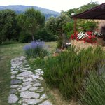 Photo of Agriturismo Apparita
