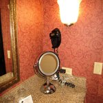 Hair Dryer & Lighted Mirror