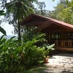 Samasati Nature Retreat resmi