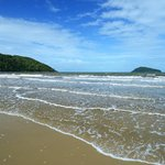 Koala Beach Resort Daintree