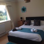 The Teal room xx