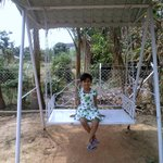 The swing in the garden