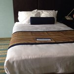 Foto van BEST WESTERN PLUS Berkshire Hills Inn & Suites