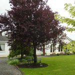 Foto de Lougher Farm B&B