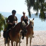 Photo of Bavarian Horse Riding Stables