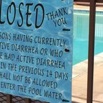 Poop-free pool. Reactive, rather than proactive, I'm afraid...