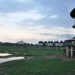 Sarova Salt Lick Game Lodge resmi