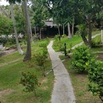 Foto Shiralea Backpackers Resort
