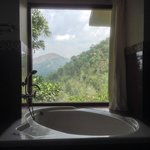 The bathtub view